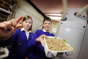 Youngsters at Stadhampton Primary School, where Organic Energy installed an OkoFEN wood pellet boiler